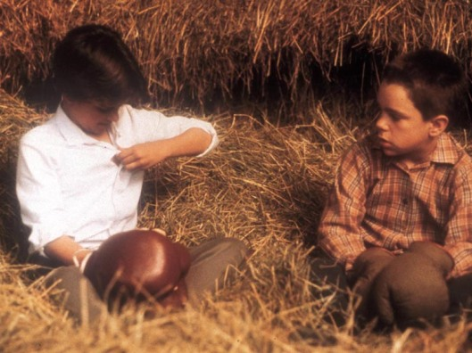 """Uma das cenas emblemáticas de """"Minha vida de cachorro"""" (1985), em que a menina, que fingia ser garato, revela-se como tal ao menino"""